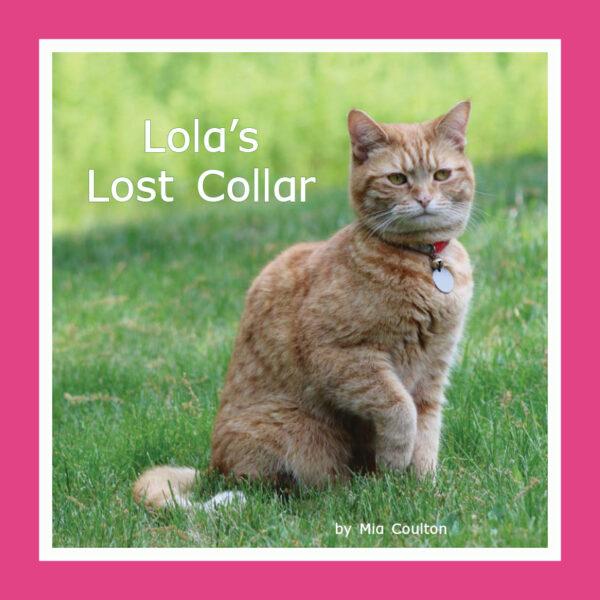 Lola's Lost Collar