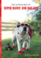 The Adventures of Super Danny and Bat-Bee Chapter Book